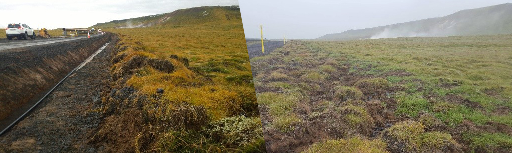 Land reclamation - before and after